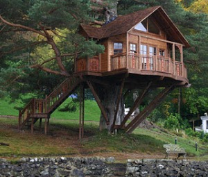 bf52a-tree-house